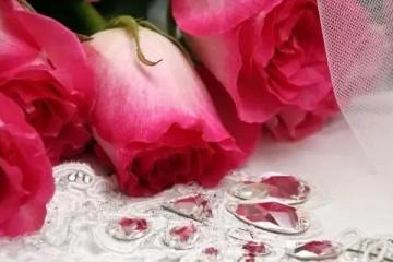 心思测验你第一眼喜爱哪束花测出你该不会是个十分精明的女性